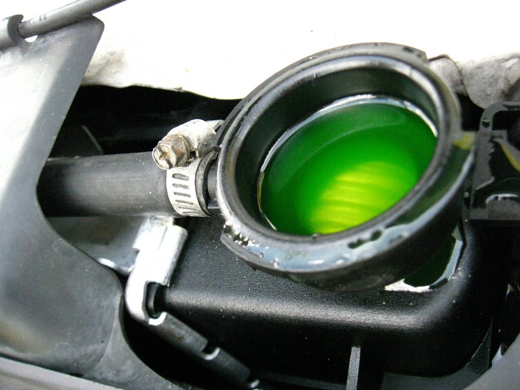 Image result for mini coolant coolant coupon